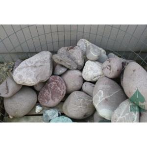 Lucido flamingo kő