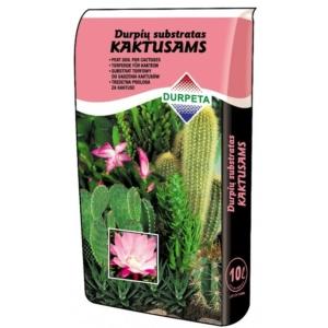 Durpeta kaktuszföld