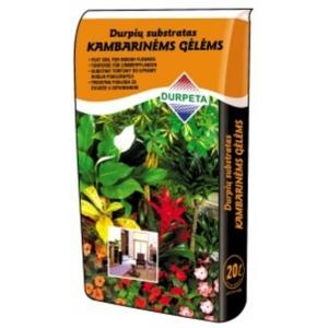 Durpeta szobanövény föld