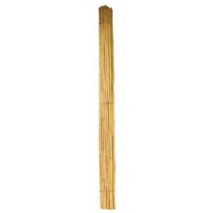 Bambusz karó